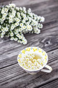 Chrysanthemum tea was first drunk in Chinese Song dynasty, and still enjoyed today