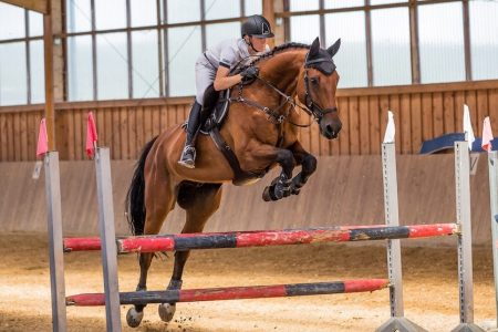 Watch international show jumping On2In2™