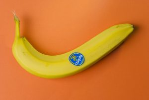 The history of future of banana.