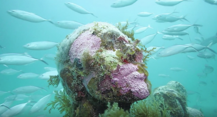 Underwater sculpture museums contain breathtaking works of art that seek to encourage environmental awareness and appreciate the breathtaking natural beauty of the underwater world.