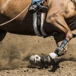 Exciting to watch-- barrel racing is a sport won or lost in fractions of a second.