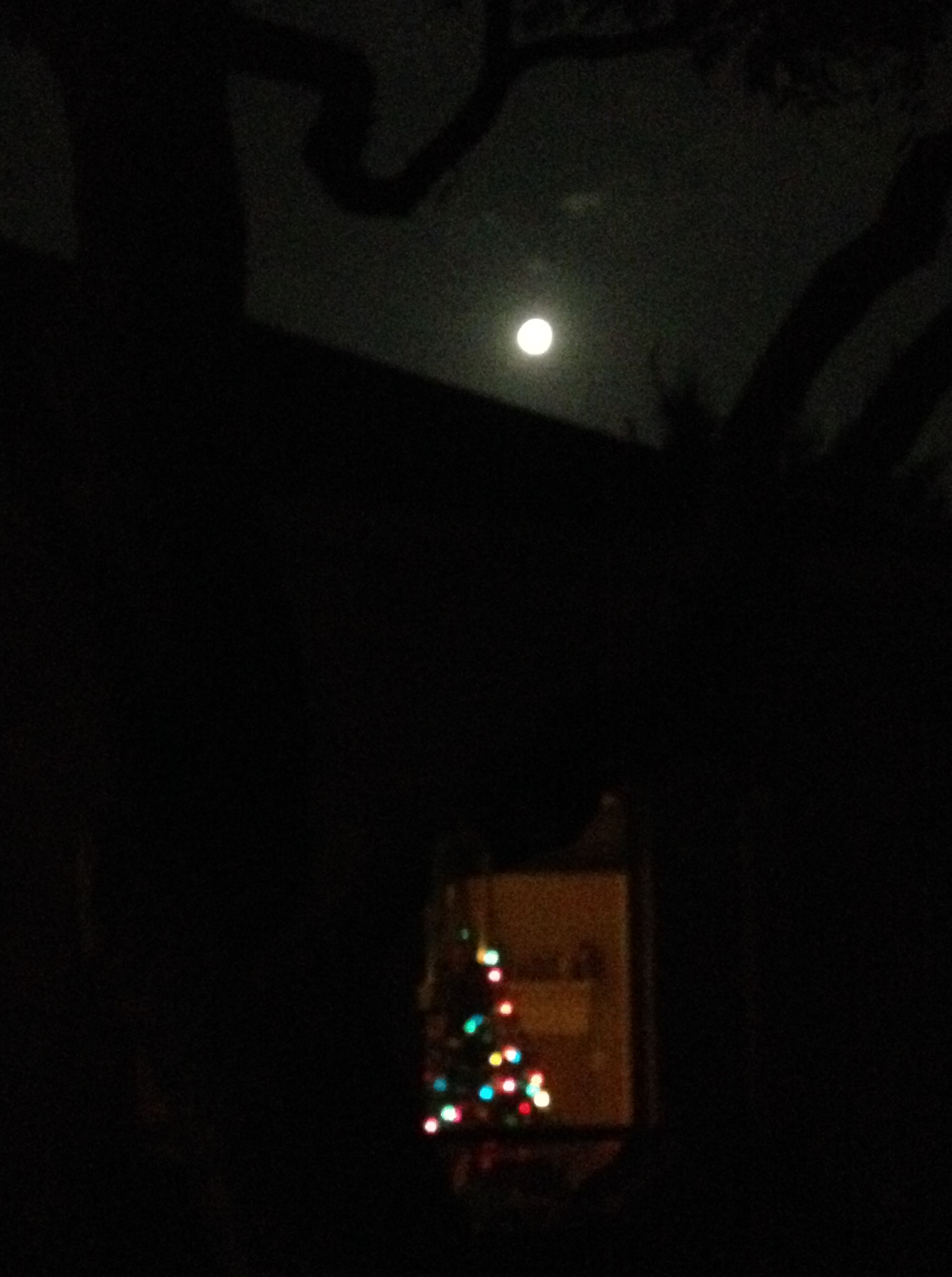 A full moon on Christmas hadn't happened in four decades, making this full moon over the Christmas Tree specially beautiful, and the best moon gazing for Christmas 2015