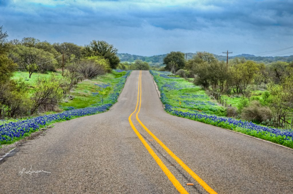 Find information on the best routes, parks and festivals to plan you Texas bluebonnet viewing this Spring.