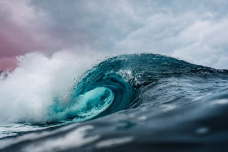 The importance of the world's ocean cannot be overstated, and each of us has the power to help assure it's survival.
