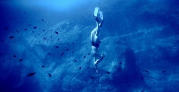 Free to watch amazing videos and learn about the demands and joy of the sport of freediving as athletes go for the world record.